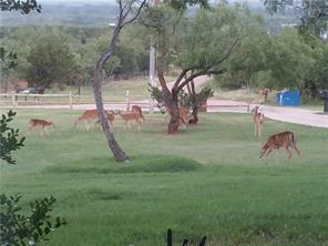 172 county road 695, buffalo gap, TX 79508