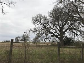 Lot 5 NW CR 4430, Blooming Grove, TX 76626