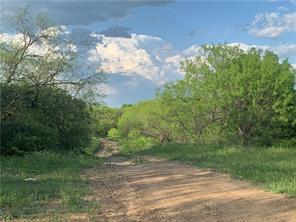 8098 County Road 195, Breckenridge, TX 76424