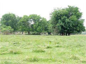 TBD County Road 4510, Cooper, TX 75432