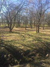 6215 pinion trail, royse city, TX 75189