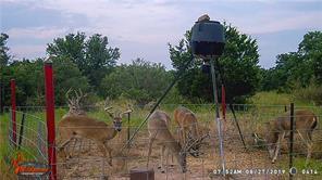 10716 county road 203, brownwood, TX 76801