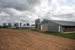 464 Private Road 4201, Leesburg, TX, 75451