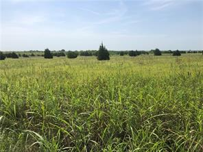 000 County Road 1160, Blooming Grove, TX, 76626