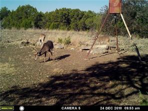 0000 County Road 264, Hico, TX 76457