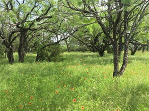 TBD County Road 3800, Lampasas, TX 76550