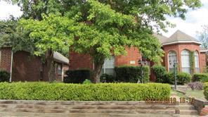 2304 Pagoda Oak