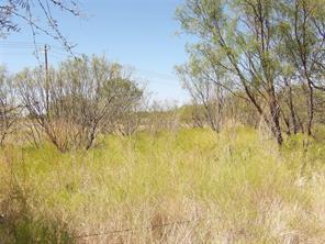 17 acre hwy 36, abilene, TX 79602