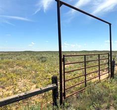000 State Hwy 214, Morton, TX 79346