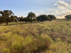 TBD County Road 236, Hico, TX, 76457