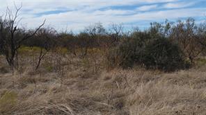 tbd county road 329, anson, TX 79501