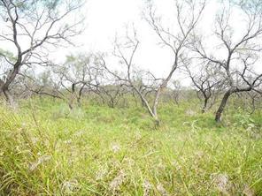 317 Lark Meadow, Runaway Bay TX 76426
