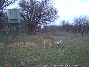 TBD Stewart Ranch Rd, Loving, TX 76450