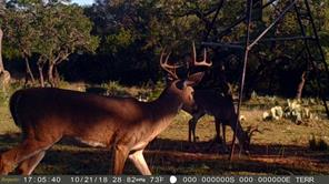 TBD CR 412, Goldthwaite, TX 76844