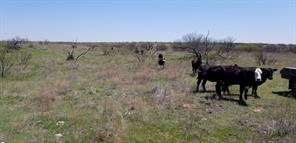 TBD CR 22 & Road H, Childress TX 79201
