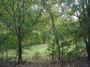 190 Rs County Road 1396, Point, TX 75472