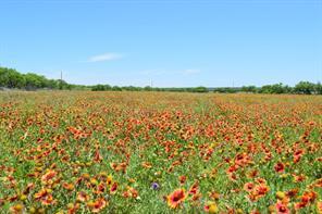 13254 Highway 153, Winters, TX, 79567