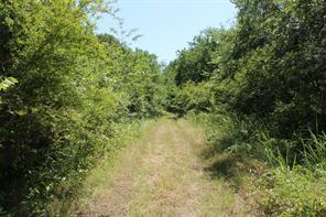 Mohawk -Dirt Drive, East Tawakoni, TX 75472