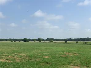 0000 County Road 2245, Ivanhoe, TX 75447