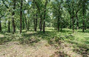 2929 Sagebrush, Flower Mound, TX, 75022