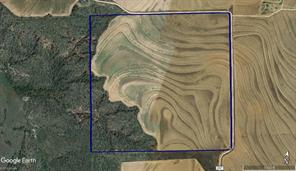 TBD CR 237, Rotan, TX 79546
