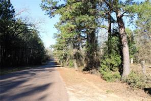 0 TBD Davidson Road 35.667 A, Harleton TX 75640