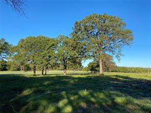 16.4 Ac Farm Road 1536, Dike, TX 75437