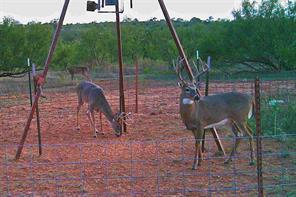 TBD Hyson Wells Rd, Quanah, TX 79252