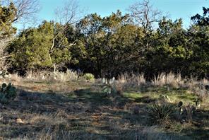 313 CR 142, Burnet, TX, 78611