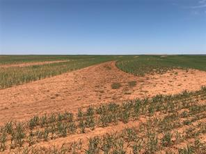 TBD 158 Acres CR 417, Roby TX 79543