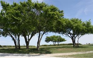 TBD Fruitland Rd, Bowie, TX 76230