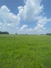 Tract E Farm Road 269, Pickton, TX 75471