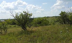 00 greenwood rd n, comanche, TX 76442