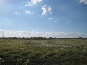 Lot 13 NE CR 1060, Rice, TX 75155