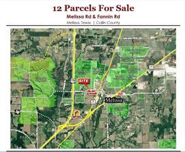 3102 Fannin, Melissa, TX, 75454