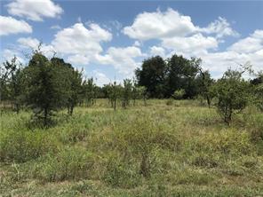000 Mercers Preserve, Comanche, TX, 76442