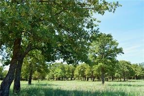 0 Treeline, Lipan, TX, 76462